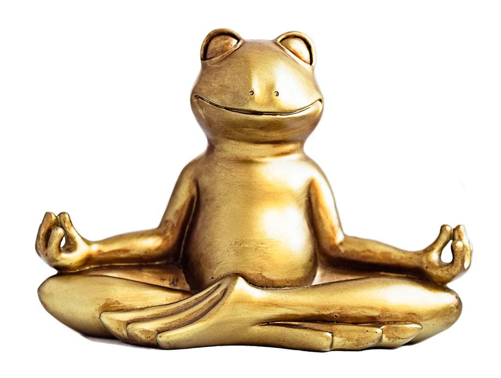 fort knox you're golden frog